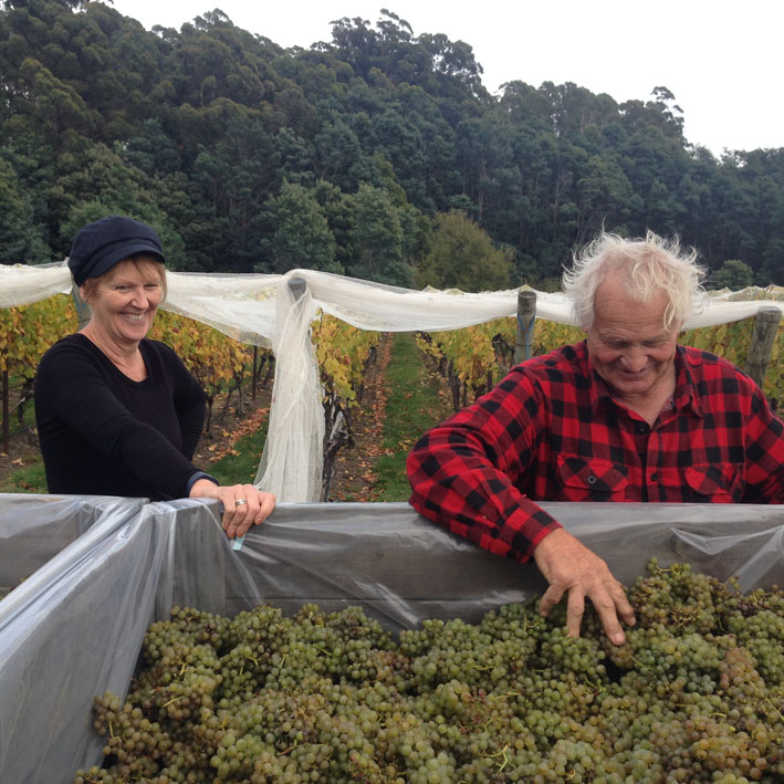 """Head of Music, Sherryn Hepher shares a joke with Victor as he removes """"MOG"""" from a bin of Riesling"""
